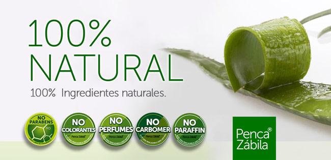 Penca Zabila · Aloe Vera Canario 100% Natural