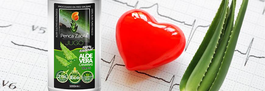 Aloe Vera cardiovascular contra el Colesterol