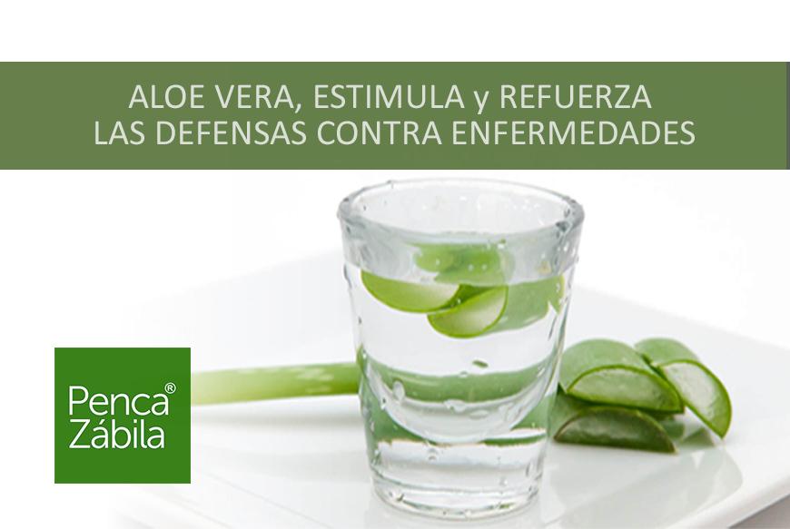 Aloe Vera refuerzo natural contra las enfermedades